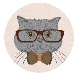 Freestyle Libre sensor sticker - 3 gray cat