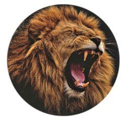 Freestyle Libre sensor sticker - Lion